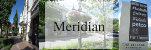 outdoor mall with plants, trees and waterfalls, meridian idaho real estate, living in meridian idaho